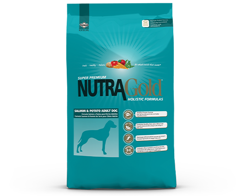 NutraGold Salmon Potato Formula bag front